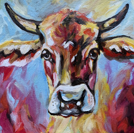 Coloured Cow 1